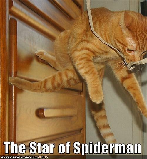 The Star of Spiderman