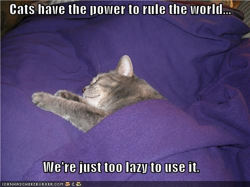 Cats have the power to rule the world...  We're just too lazy to use it.