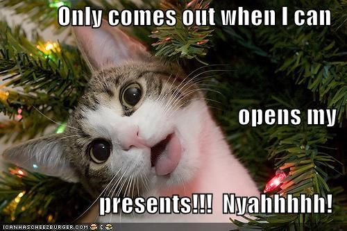 Only comes out when I can opens my presents!!!  Nyahhhhh!