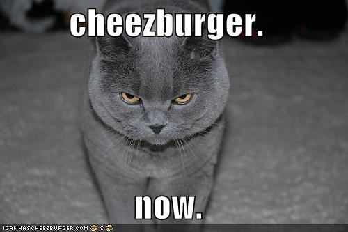 cheezburger.  now.