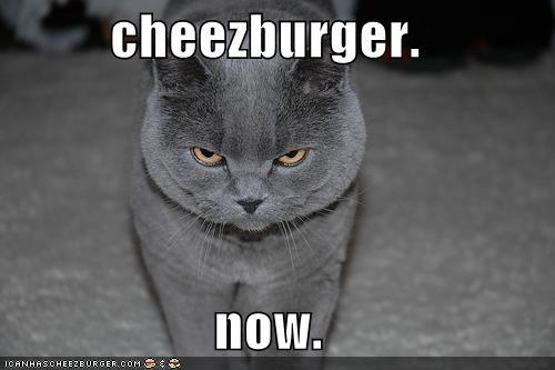 cheezburger.  now.