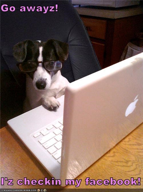 Go awayz!  I'z checkin my facebook!