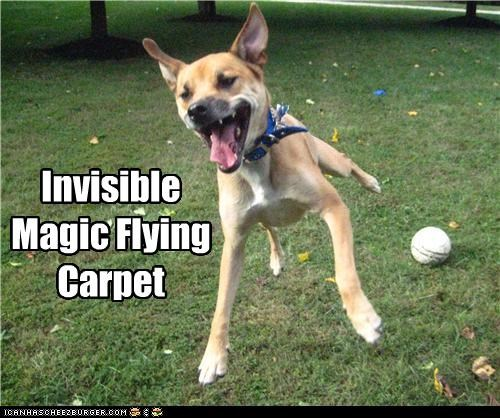 Invisible Magic Flying Carpet
