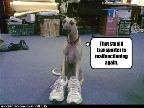 That stupid transporter is malfunctioning again.