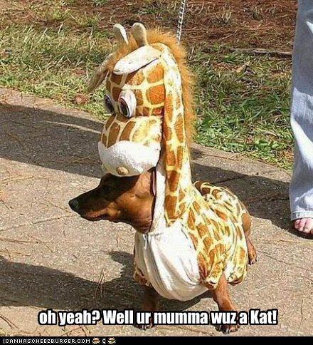 oh yeah? Well ur mumma wuz a Kat!