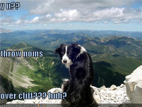 y u?? throw noms over cliff??? huh?