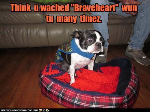 "Think  u wached ""Braveheart""  wun tu  many  timez."