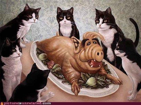 Alf,art,Cats,gordon shumway,Malmac,scary,wtf