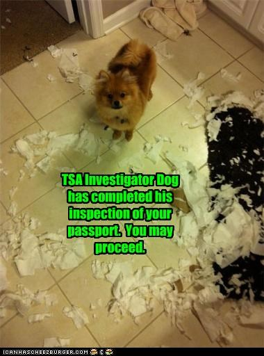 TSA Investigator Dog has completed his inspection of your passport.  You may proceed.