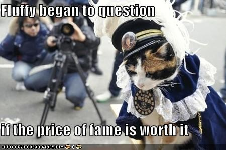 Fluffy began to question   if the price of fame is worth it