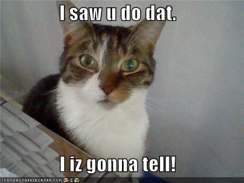 I saw u do dat.  I iz gonna tell!