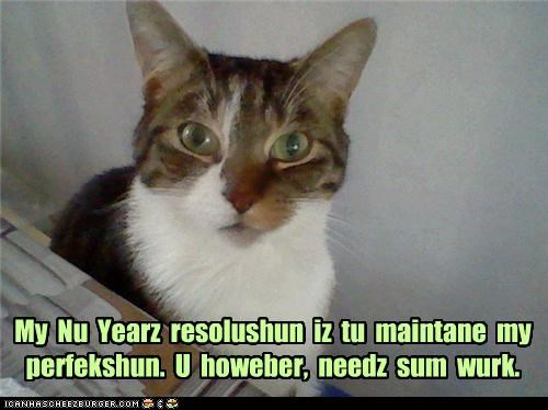 My  Nu  Yearz  resolushun