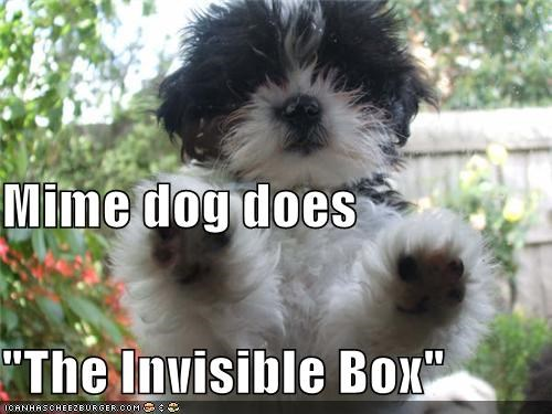 "Mime dog does ""The Invisible Box"""
