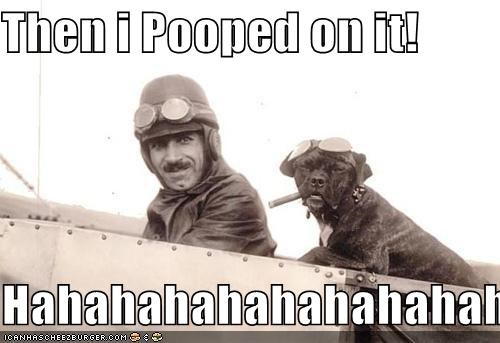 Then i Pooped on it!  Hahahahahahahahahaha