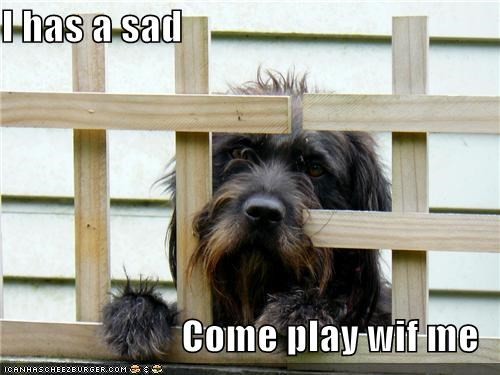 I has a sad  Come play wif me