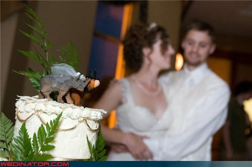 bear,cake toppers,funny wedding photos,rhinoceros,wedding cake