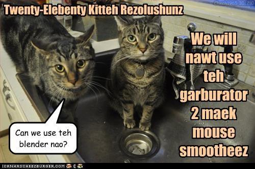 Twenty-Elebenty Kitteh Rezolushunz