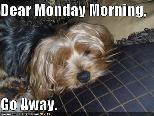 Dear Monday Morning,  Go Away.