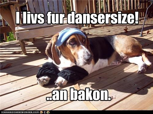 bacon,basset hound,counterproductive,eating,exercise,Hall of Fame,living,noms,raison-detre,reason,sweatband,will,working out,workout