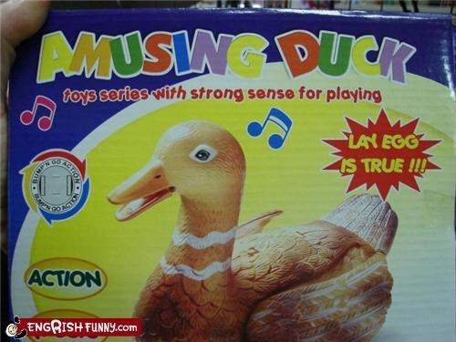 """Amusing"" is Not in My Duck Lexicon"