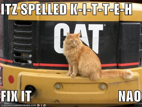 ITZ SPELLED K-I-T-T-E-H  FIX IT                               NAO
