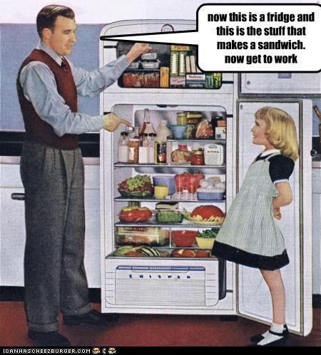 now this is a fridge and this is the stuff that makes a sandwich. now get to work