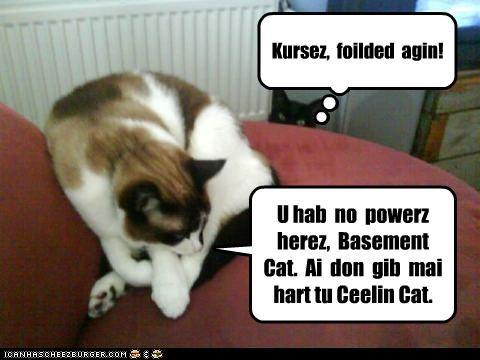 U hab  no  powerz  herez,  Basement  Cat.  Ai  don  gib  mai  hart tu Ceelin Cat.