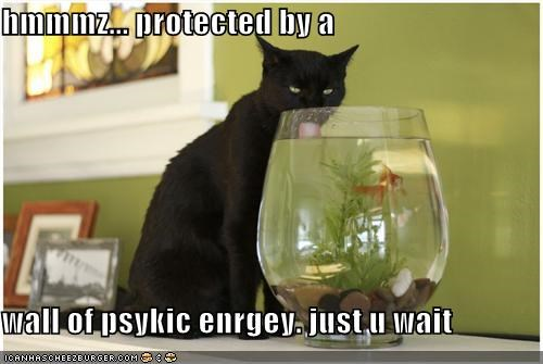 hmmmz... protected by a  wall of psykic enrgey. just u wait