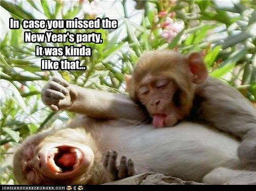 In  case you missed the New Year's party,  it was kinda like that...