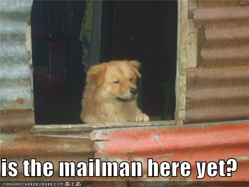 is the mailman here yet?