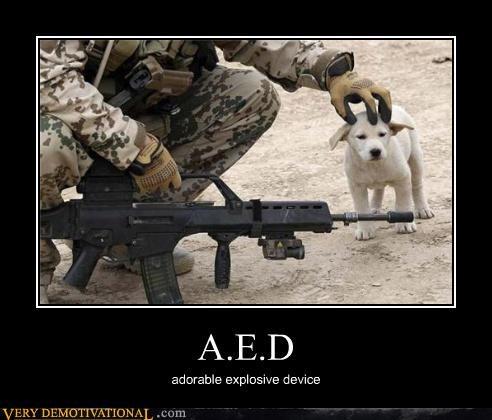 A.E.D