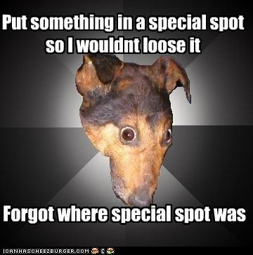 Put something in a special spot so I wouldnt loose it