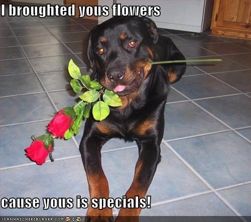 I broughted yous flowers  cause yous is specials!