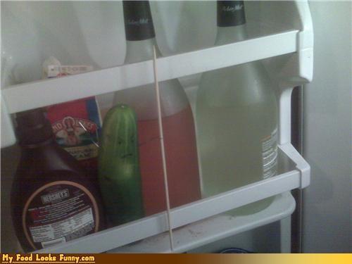 cucumber,defend,defense,fridge,fruits-veggies,pickle,refridgerator,vegetable,wine