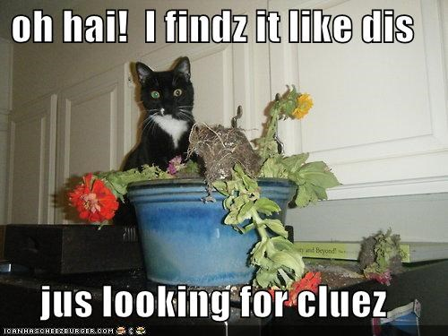 oh hai!  I findz it like dis  jus looking for cluez