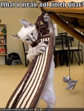 What u mean, not kitteh gitar?
