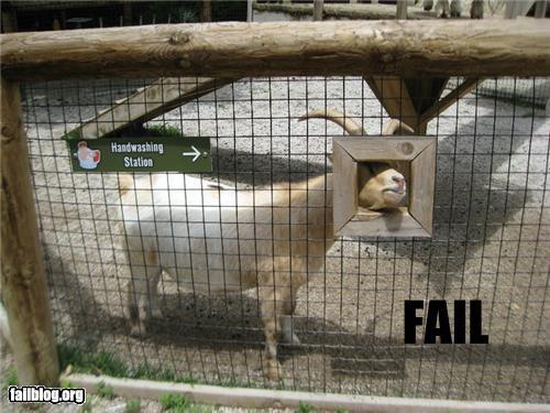 Handwashing Fail