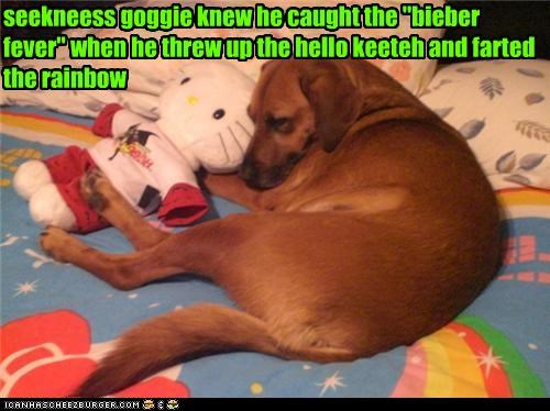 "seekneess goggie knew he caught the ""bieber fever"" when he threw up the hello keeteh and farted the rainbow"