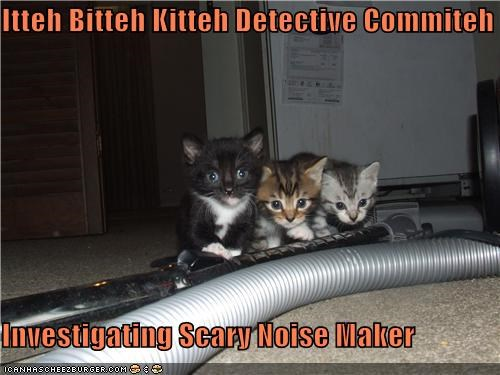 Itteh Bitteh Kitteh Detective Commiteh  Investigating Scary Noise Maker