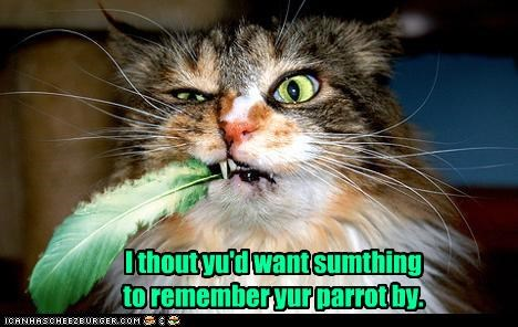 I thout yu'd want sumthing  to remember yur parrot by.