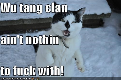 Wu tang clan ain't nothin to fuck with!