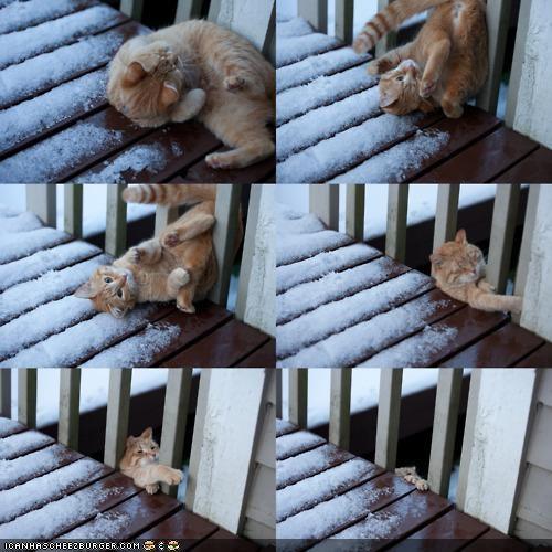 deck,FAIL,fall,flip,oh noes,photo set,snow,somersault,winter