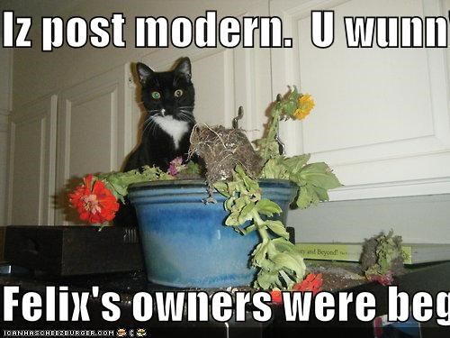 Iz post modern.  U wunn't unnerstan.  Felix's owners were beginning to suspect that the art class had been a bad idea.
