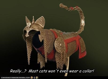 Really...?  Most cats won't even wear a collar!