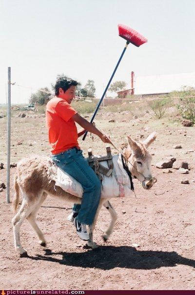 Modern Day Don Quixote