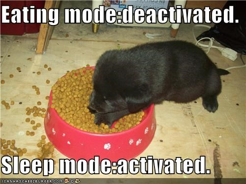 Eating mode:deactivated.  Sleep mode:activated.