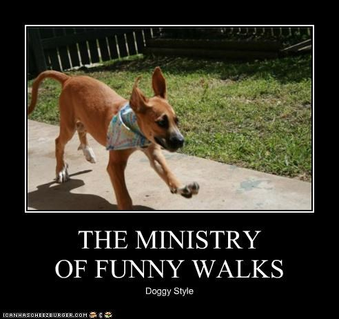 THE MINISTRY  OF FUNNY WALKS