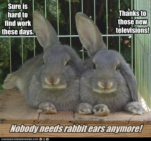 Rabbit Ears?