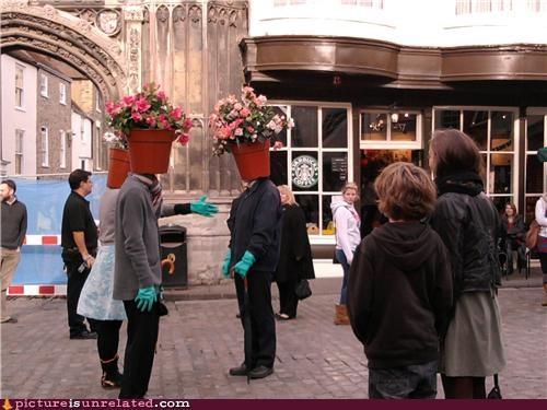 Strange goings on in olde Canterbury