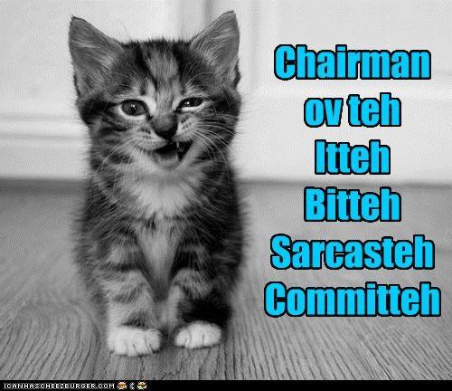 Chairman ov teh Itteh Bitteh Sarcasteh Committeh